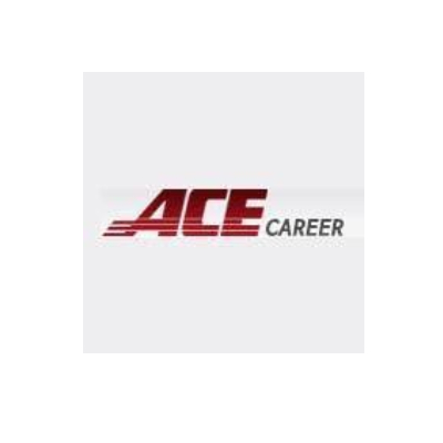 Ace Career Consulting